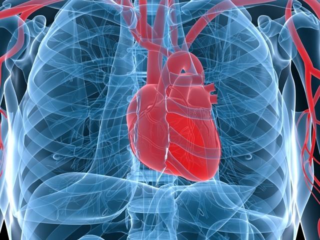 Из-за сердечно-сосудистой системы может возникнуть купероз лица