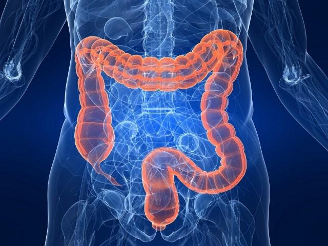 Тромбоз кишечника человека