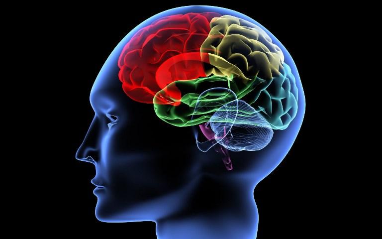 Атеросклероз БЦА приводит к кислородному голоданию мозга