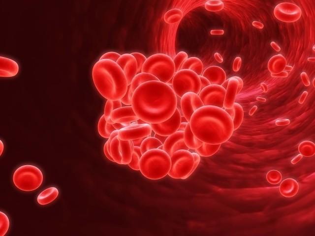 Причиной мезентериальных тромбообразований являются болезни сердца, например, инфаркт миокарда, кардиосклероз