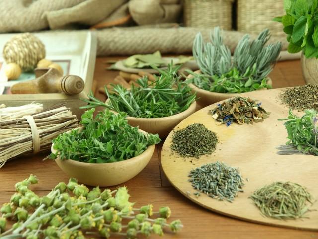 Целебные растения при местном и внутреннем применении оказывают эффективные результаты, что подтверждается многочисленными отзывами
