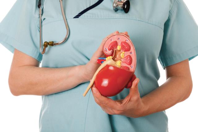 Для почечных патологий свойственен стеноз, при нем происходит сужение внутренних и основных почечных артерий